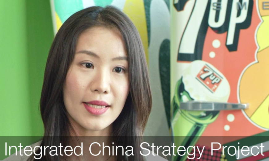 Integrated China Strategy Project